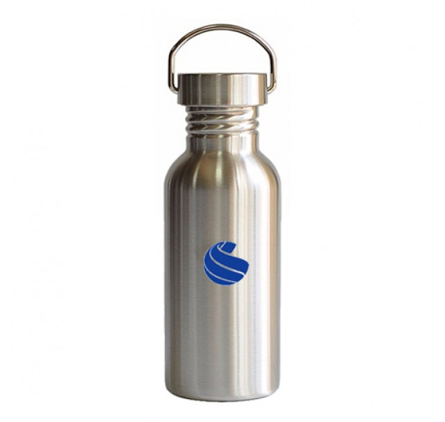 Global Sports Stainless Steel Drinks Bottle 500ml