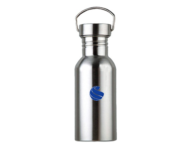 Global Sports Stainless Steel Drinks Bottle 500ml NOW £9.99 !