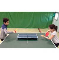 Fold-up Mini Table Tennis Set