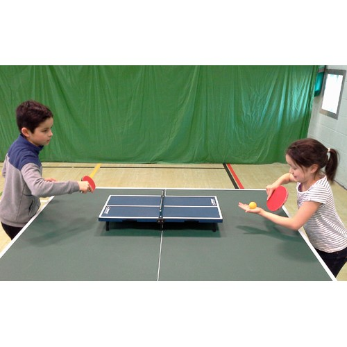 Fold up mini table tennis set for Small ping pong balls